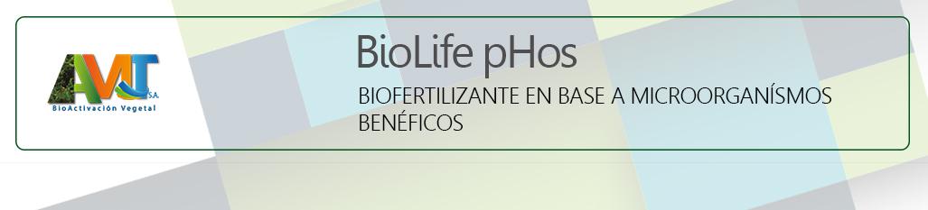 BiolifepHos - ok