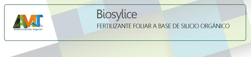 Biosylice - ok
