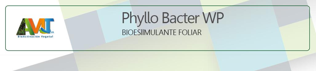 Phyllo bacter ok1
